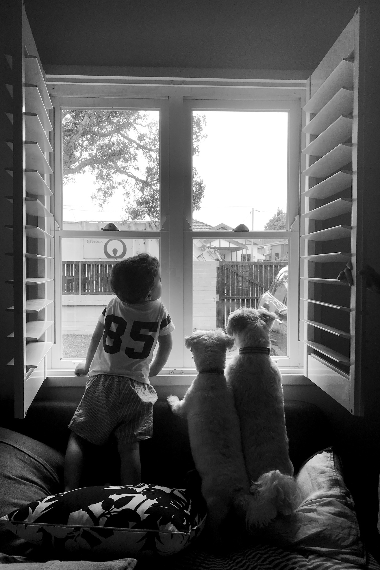 Daydreaming at the window in black and white
