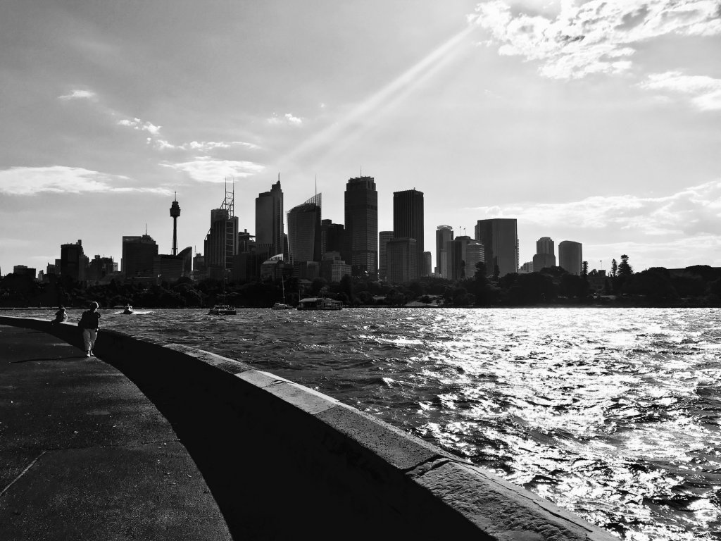 Sydney Cityscape black and white