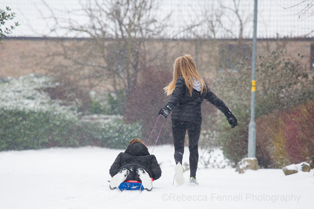 children playing on a sledge in the snow