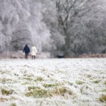 people walking through a snowy field