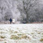 people walking through a snowy field